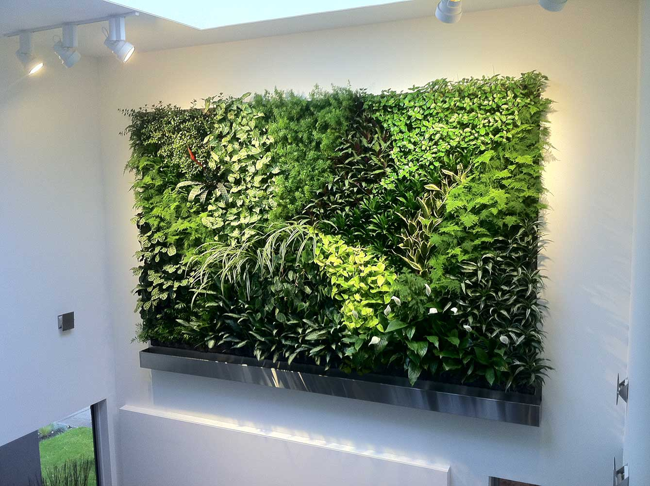 living-wall-project